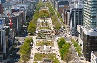 Une vue sur la grande avenue de Sapporo