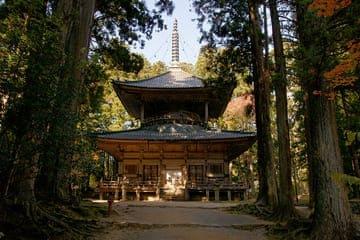 Un des nombreux temples du mont Koya