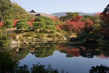 Le paysage du magnifique jardin à Nara