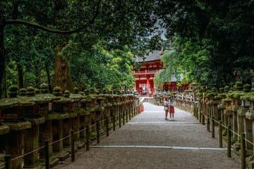L'allée menant au sanctuaire de Kasuga Taisha
