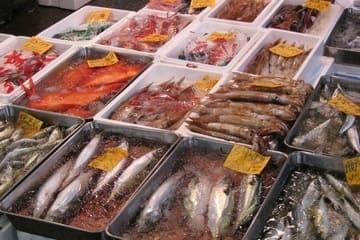 Un étalage de poissons et autres espèces de la mer