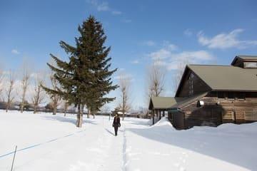 La neige omniprésente en hiver dans la région de Hokkaido
