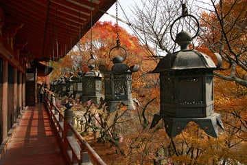 Le somptueux sanctuaire de Tanzan à Asuka