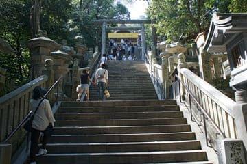 Une partie des nombreuses marches pour rejoindre le sanctuaire