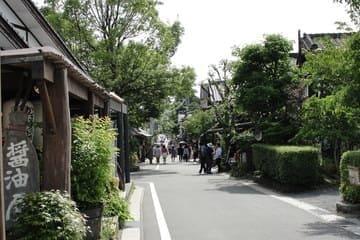Ruelle verte et fleurie dans la ville de Yufui