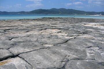 Photo du tapis de pierre qui plonge vers la mer