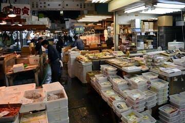 Les vastes étendus de poissons au quartier de Tsukiji