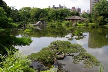 Photo du parc vert et naturel de Hiroshima