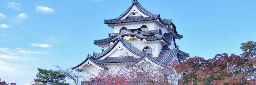 Vue imprenable sur le château de Hikone