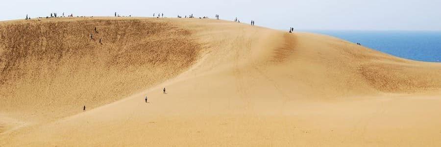 Les vastes dunes de sables de Tottori