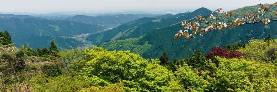 Un magnifique panorama du Kanto depuis le mont Mitake