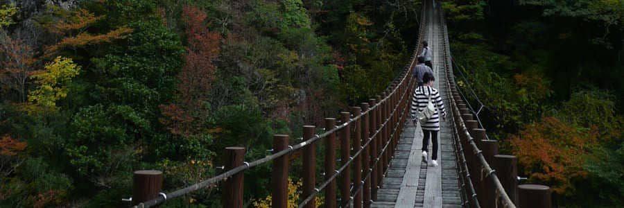 Photo de visiteurs traversant le pont suspendu