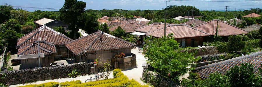 Panorama sur un village de l'île de Taketomi-jima